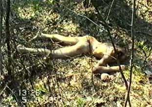http://murders.ru/ryahovsky_28.jpg